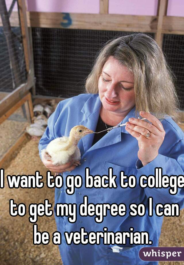 I want to go back to college to get my degree so I can be a veterinarian.