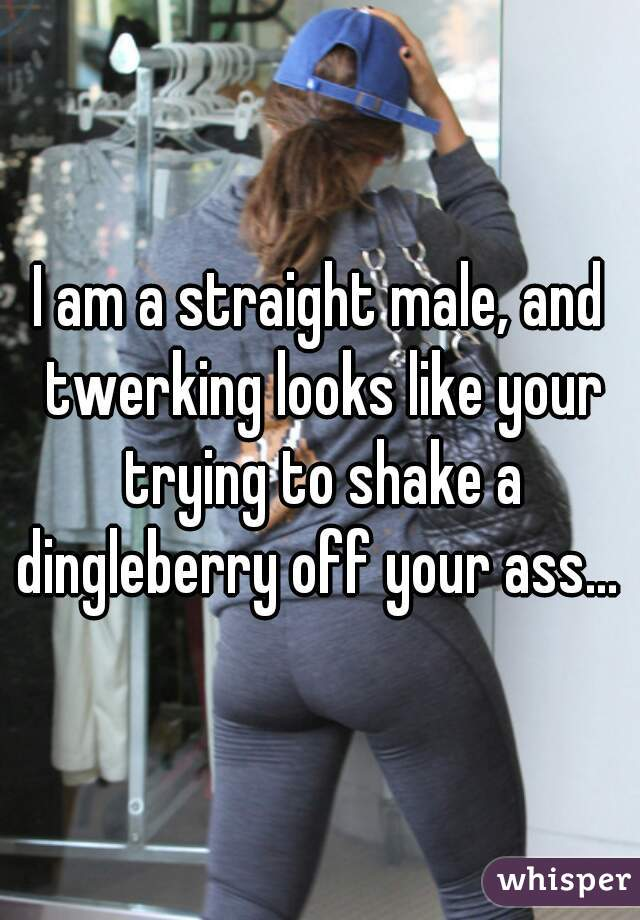 I am a straight male, and twerking looks like your trying to shake a dingleberry off your ass...