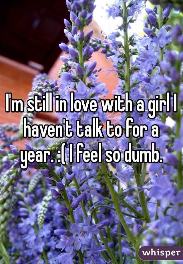 I'm still in love with a girl I haven't talk to for a year. :( I feel so dumb.