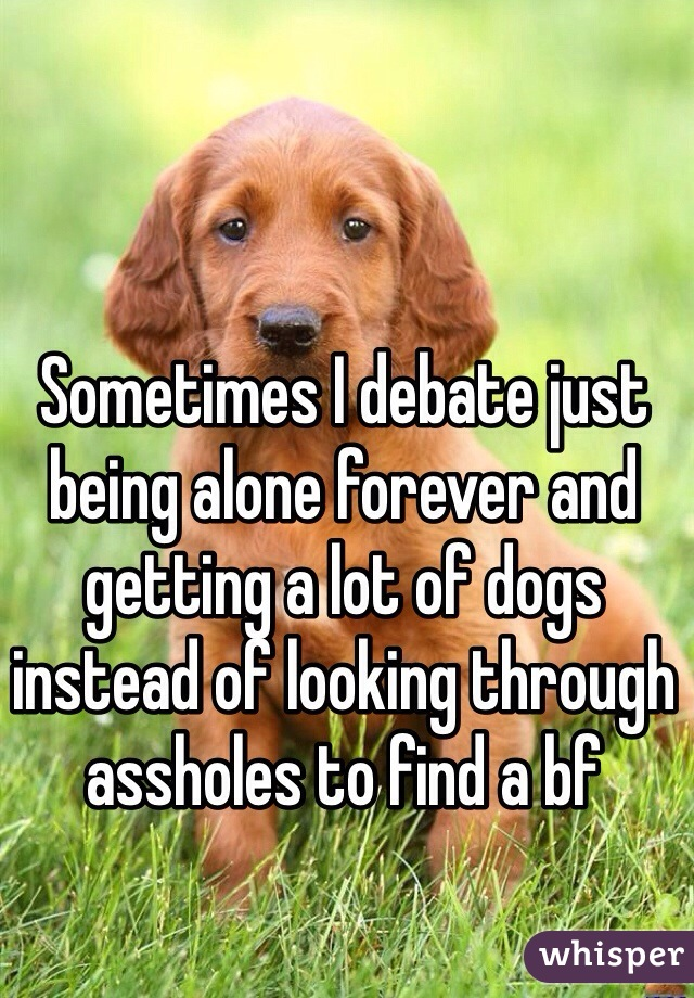 Sometimes I debate just being alone forever and getting a lot of dogs instead of looking through assholes to find a bf