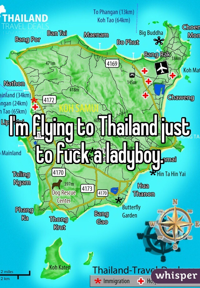 I'm flying to Thailand just to fuck a ladyboy.