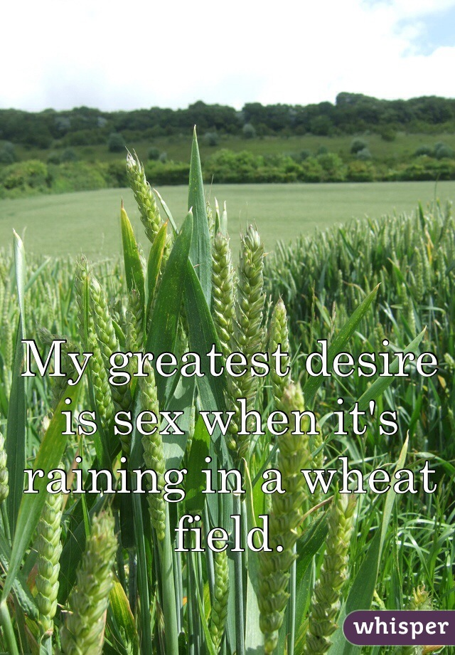 My greatest desire is sex when it's raining in a wheat field.