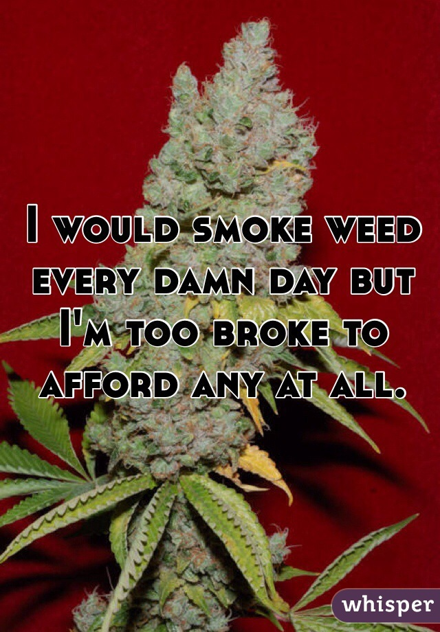 I would smoke weed every damn day but I'm too broke to afford any at all.
