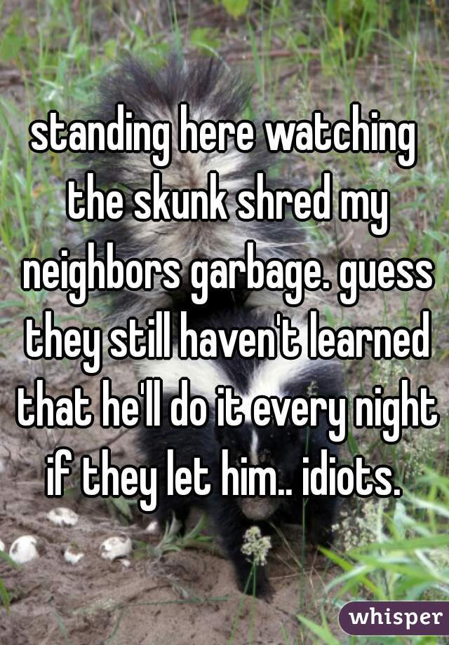 standing here watching the skunk shred my neighbors garbage. guess they still haven't learned that he'll do it every night if they let him.. idiots.