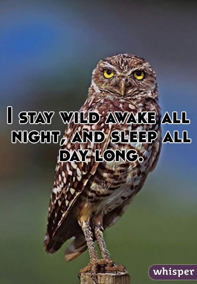 I stay wild awake all night, and sleep all day long.