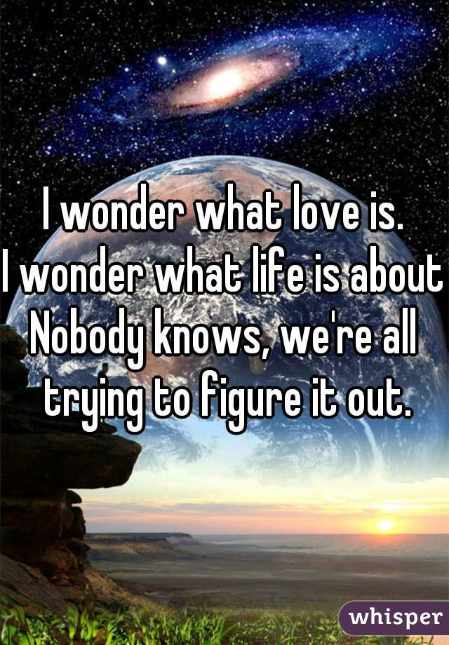 I wonder what love is. I wonder what life is about. Nobody knows, we're all trying to figure it out.