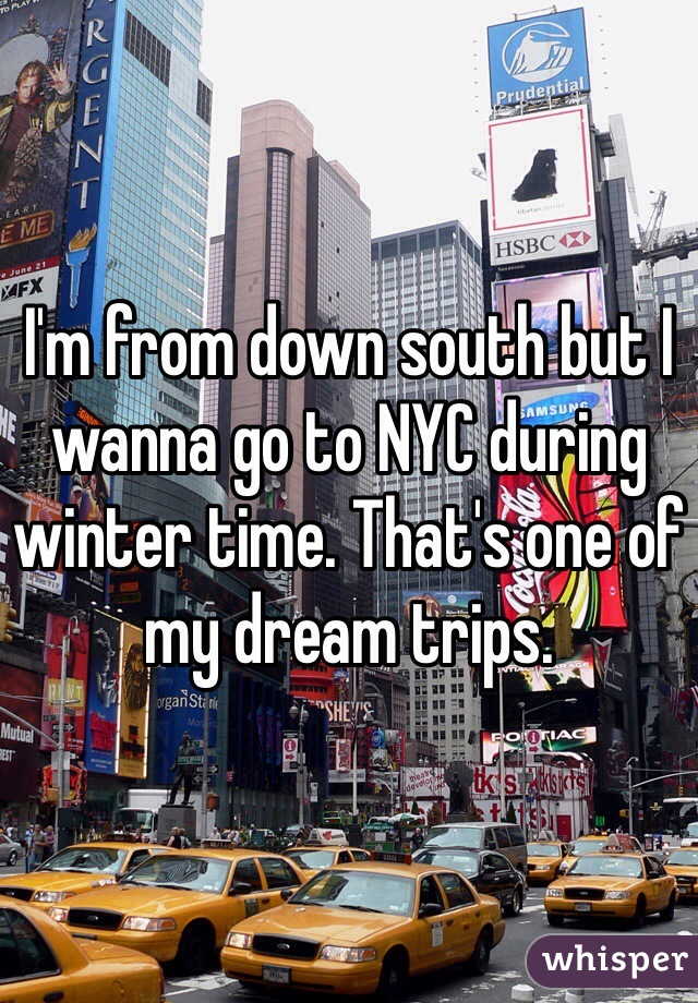 I'm from down south but I wanna go to NYC during winter time. That's one of my dream trips.