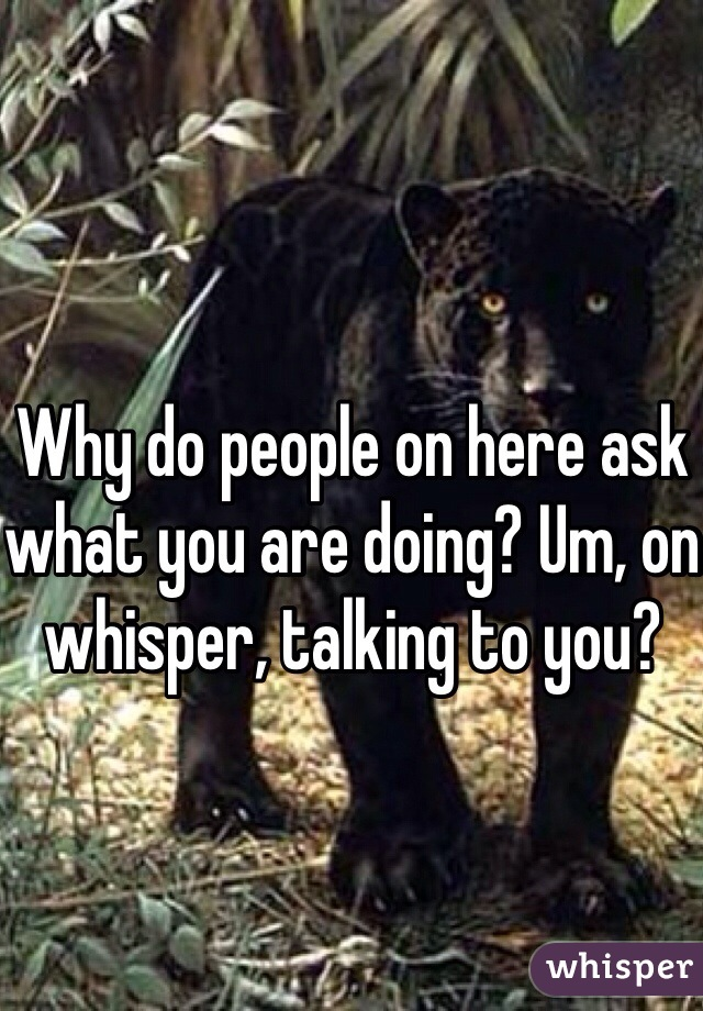 Why do people on here ask what you are doing? Um, on whisper, talking to you?