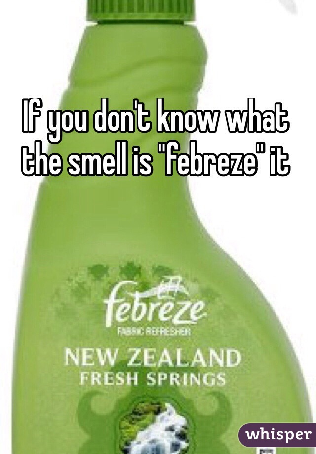 "If you don't know what the smell is ""febreze"" it"