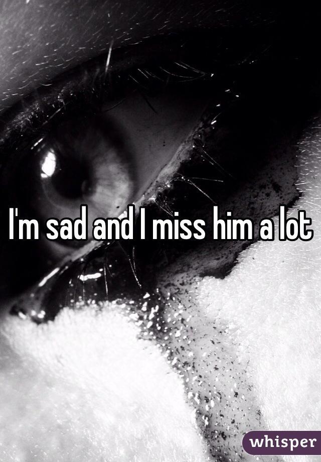 I'm sad and I miss him a lot