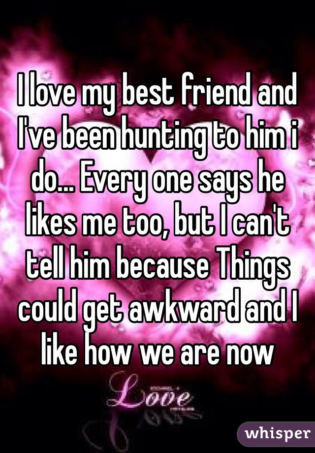 I love my best friend and I've been hunting to him i do... Every one says he likes me too, but I can't tell him because Things could get awkward and I like how we are now
