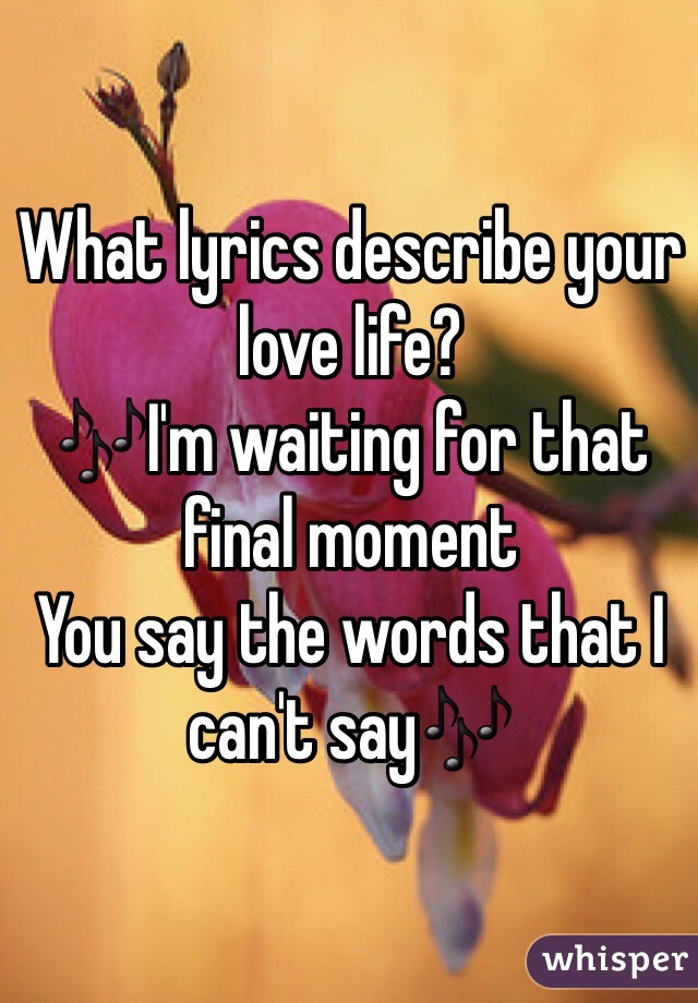 What lyrics describe your love life? 🎶I'm waiting for that final moment  You say the words that I can't say🎶