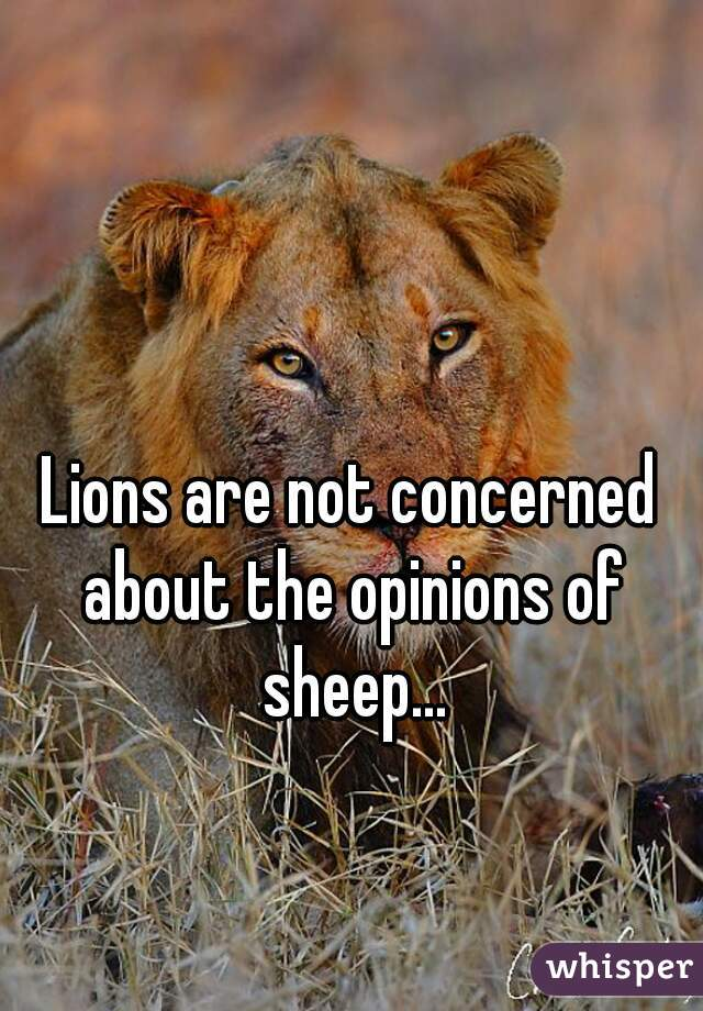 Lions are not concerned about the opinions of sheep...