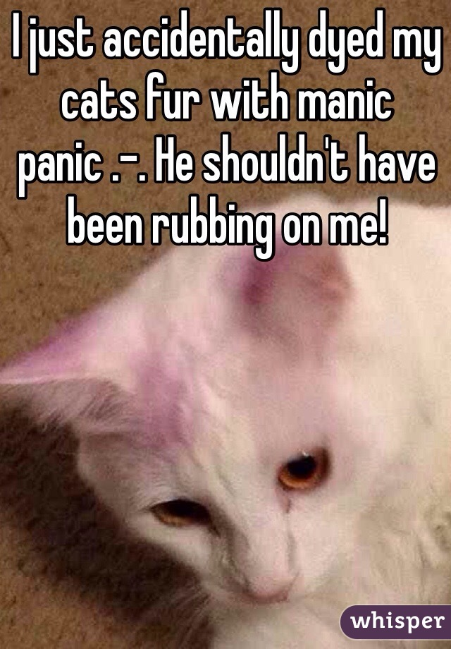 I just accidentally dyed my cats fur with manic panic .-. He shouldn't have been rubbing on me!