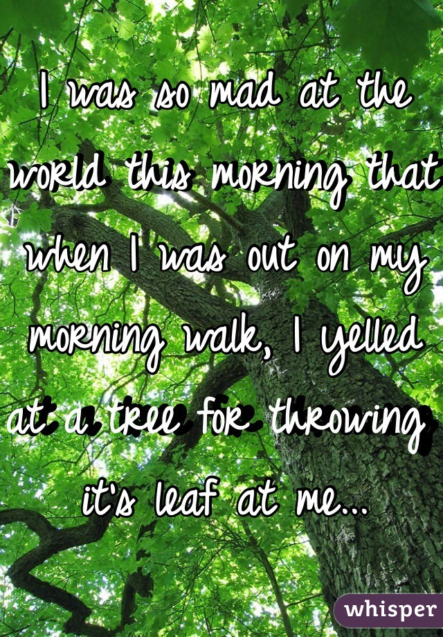 I was so mad at the world this morning that when I was out on my morning walk, I yelled at a tree for throwing it's leaf at me...