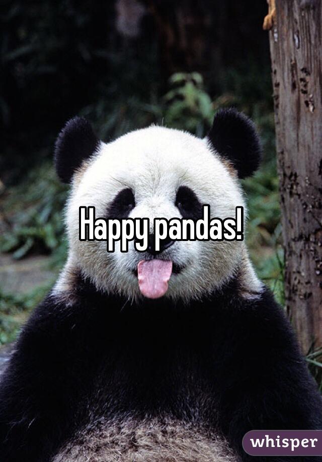 Happy pandas!