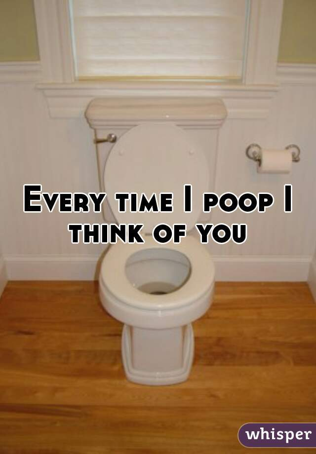 Every time I poop I think of you