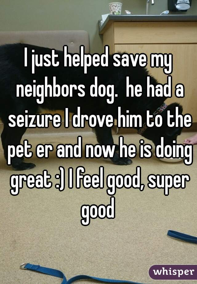I just helped save my neighbors dog.  he had a seizure I drove him to the pet er and now he is doing great :) I feel good, super good