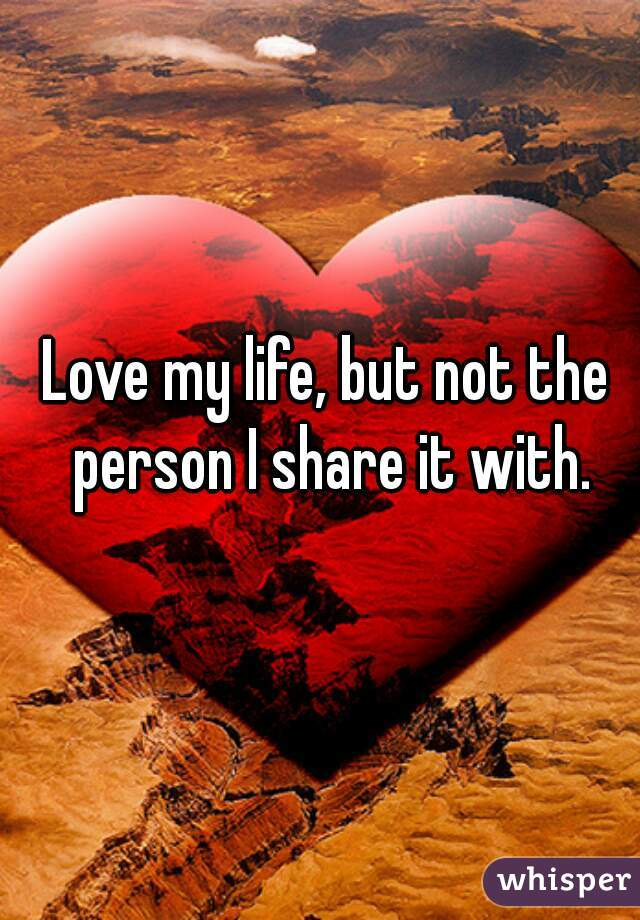 Love my life, but not the person I share it with.