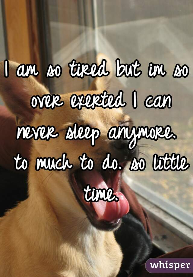 I am so tired but im so over exerted I can never sleep anymore.  to much to do. so little time.