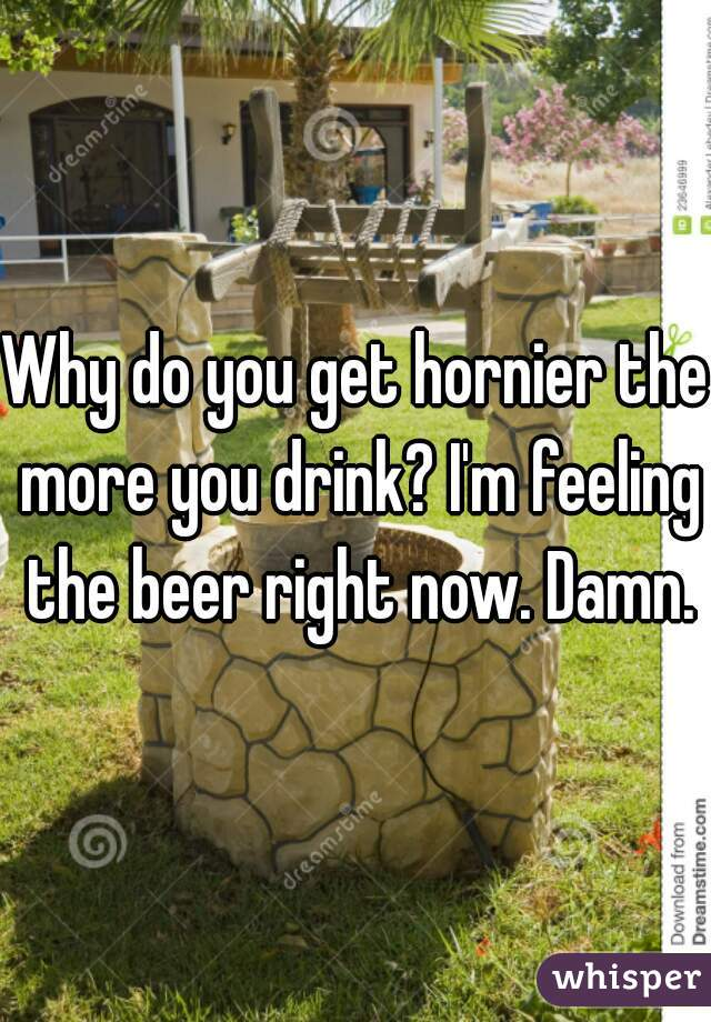 Why do you get hornier the more you drink? I'm feeling the beer right now. Damn.