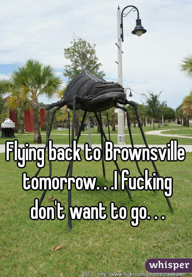 Flying back to Brownsville tomorrow. . .I fucking don't want to go. . .