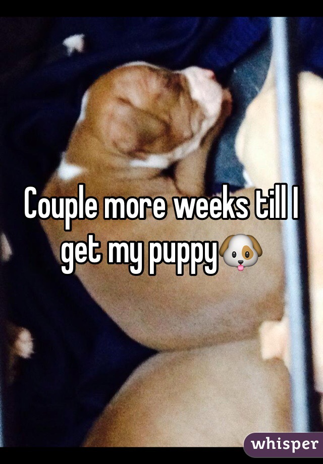 Couple more weeks till I get my puppy🐶