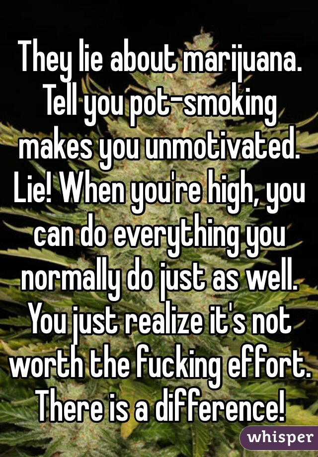 They lie about marijuana. Tell you pot-smoking makes you unmotivated. Lie! When you're high, you can do everything you normally do just as well. You just realize it's not worth the fucking effort. There is a difference!