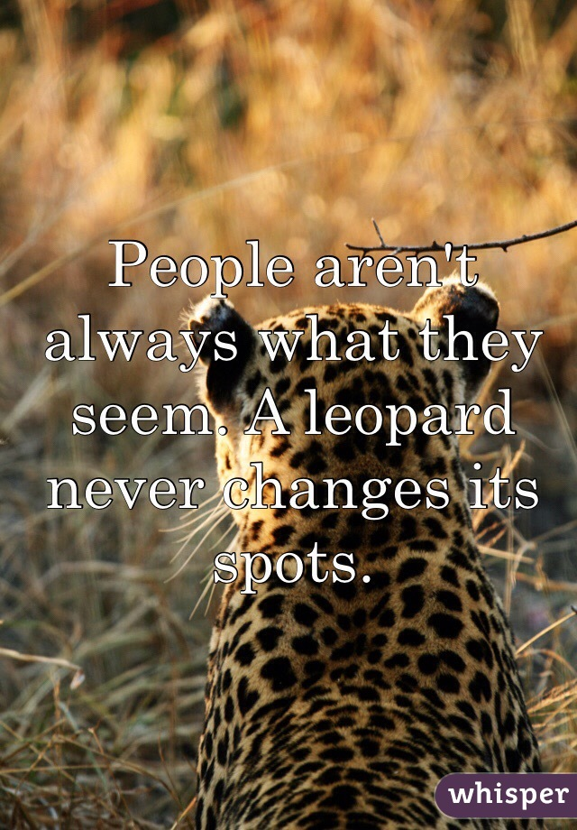 People aren't always what they seem. A leopard never changes its spots.