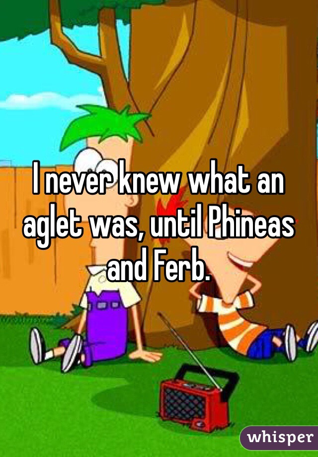 I never knew what an aglet was, until Phineas and Ferb.