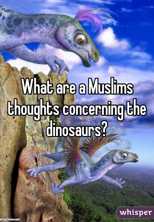 What are a Muslims thoughts concerning the dinosaurs?