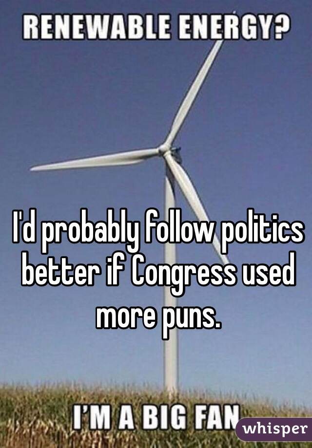 I'd probably follow politics better if Congress used more puns.