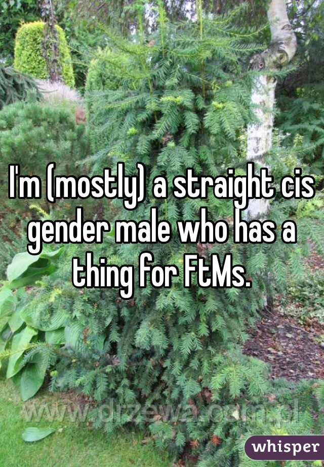 I'm (mostly) a straight cis gender male who has a thing for FtMs.