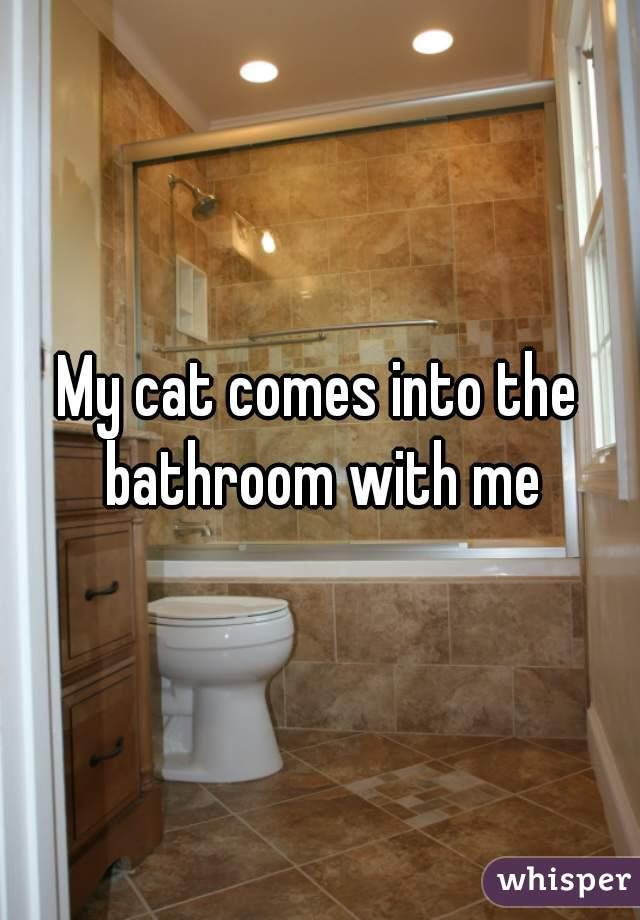 My cat comes into the bathroom with me