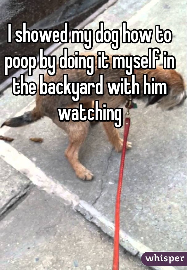 I showed my dog how to poop by doing it myself in the backyard with him watching