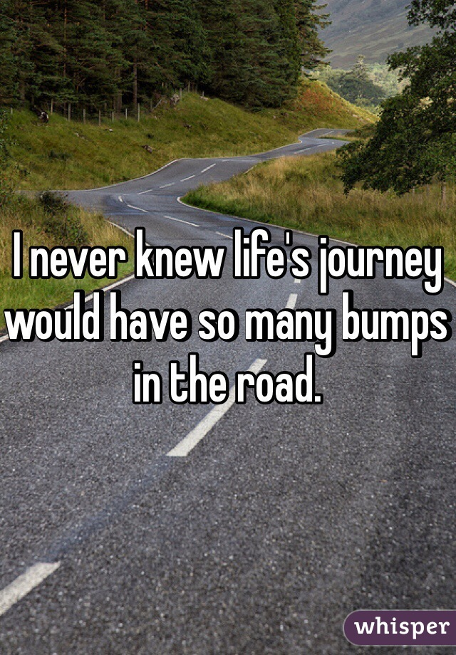 I never knew life's journey would have so many bumps in the road.