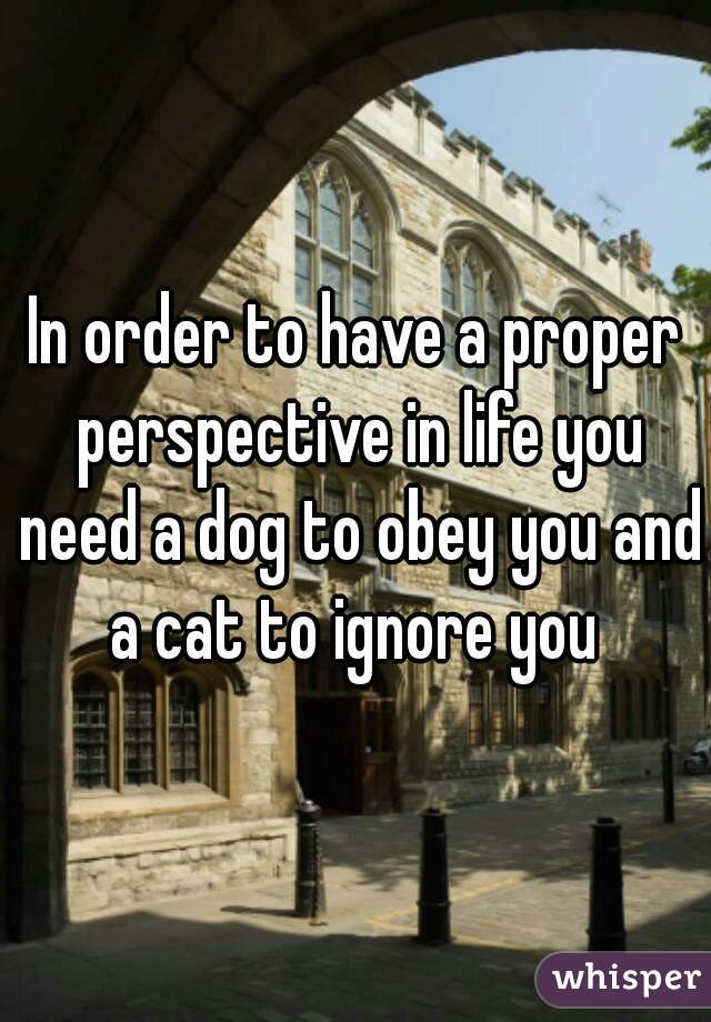 In order to have a proper perspective in life you need a dog to obey you and a cat to ignore you