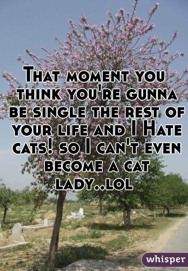 That moment you think you're gunna be single the rest of your life and I Hate cats! so I can't even become a cat lady..lol