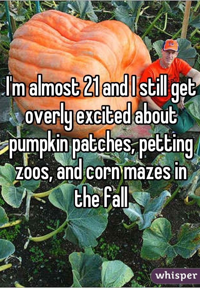 I'm almost 21 and I still get overly excited about pumpkin patches, petting zoos, and corn mazes in the fall