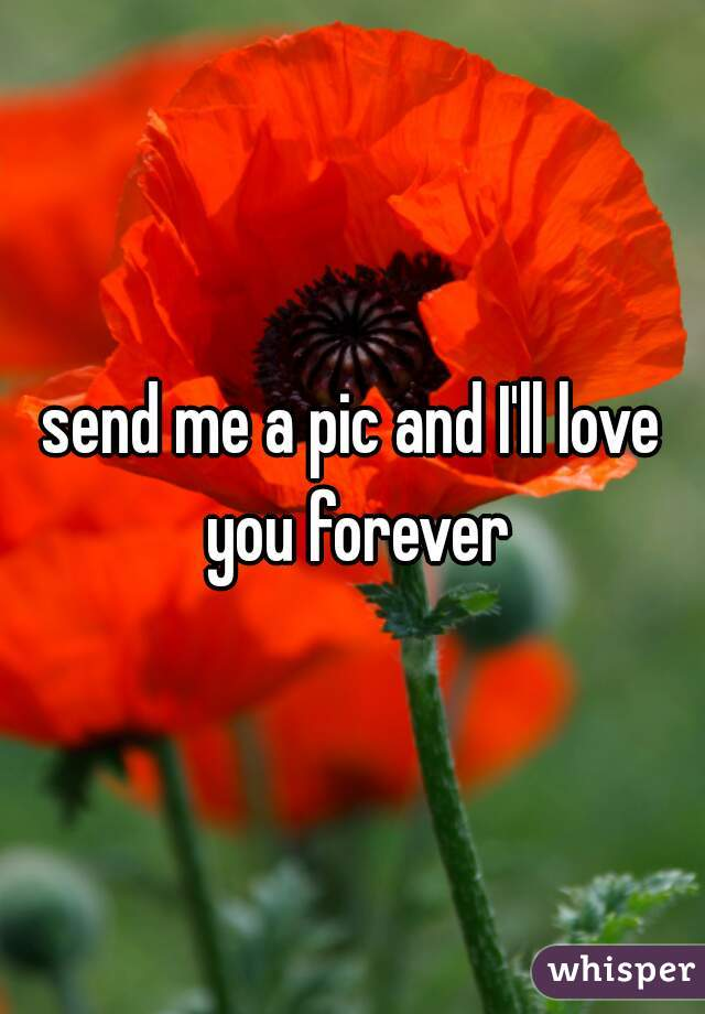 send me a pic and I'll love you forever