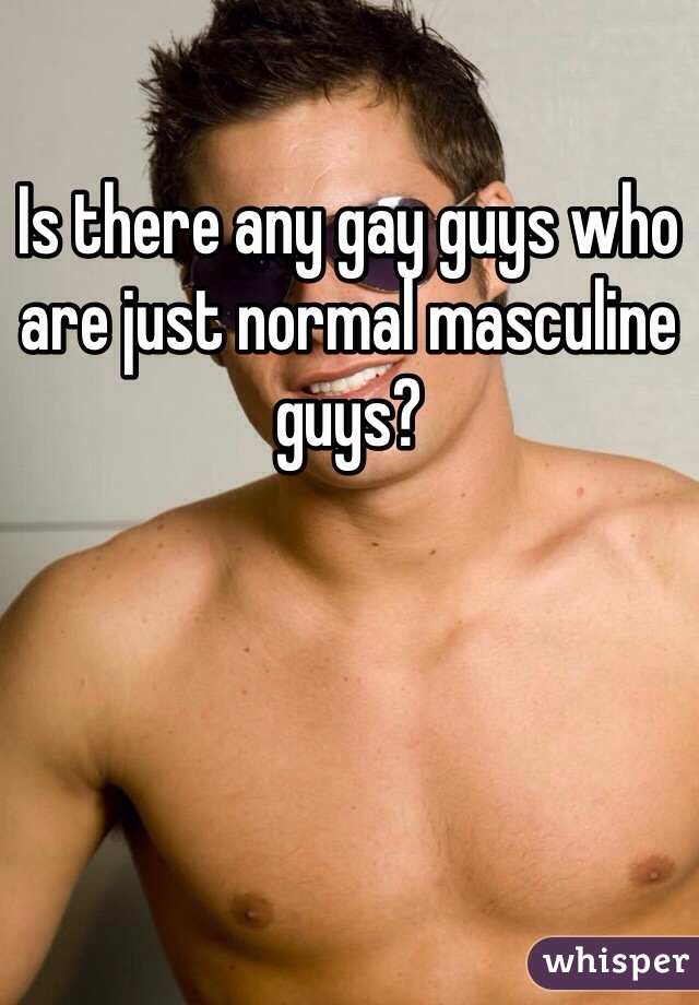Is there any gay guys who are just normal masculine guys?