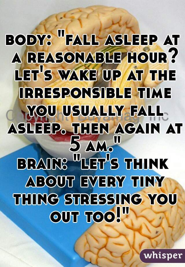 """body: """"fall asleep at a reasonable hour? let's wake up at the irresponsible time you usually fall asleep. then again at 5 am.""""  brain: """"let's think about every tiny thing stressing you out too!"""""""