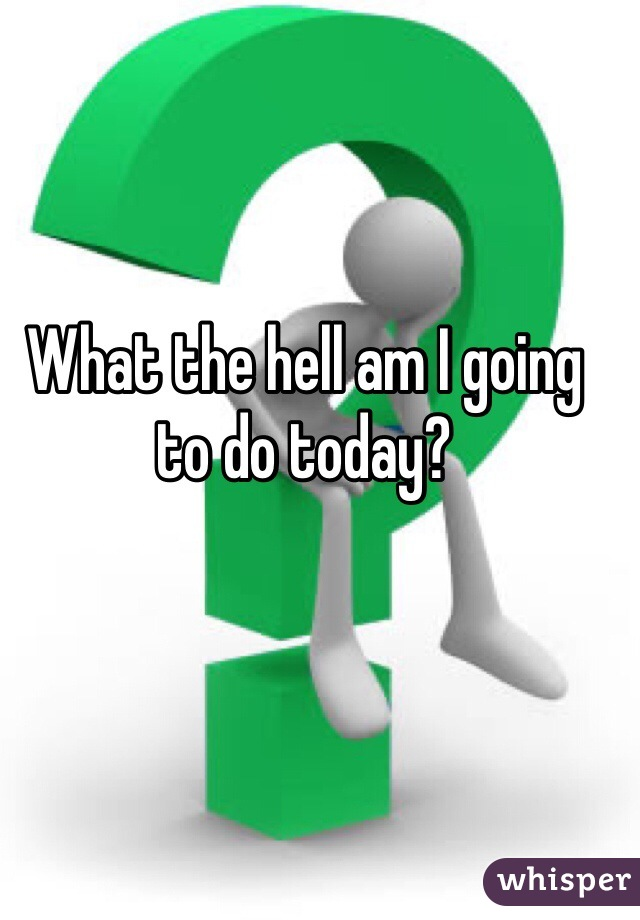 What the hell am I going to do today?