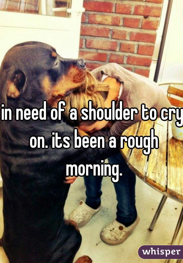 in need of a shoulder to cry on. its been a rough morning.