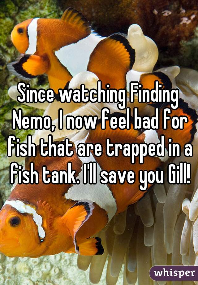 Since watching Finding Nemo, I now feel bad for fish that are trapped in a fish tank. I'll save you Gill!