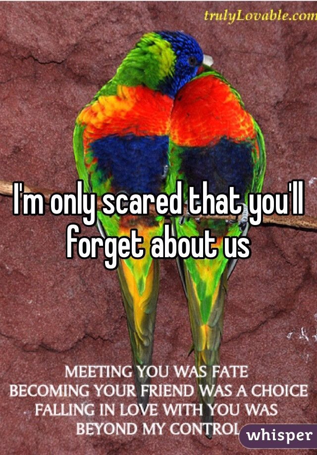 I'm only scared that you'll forget about us