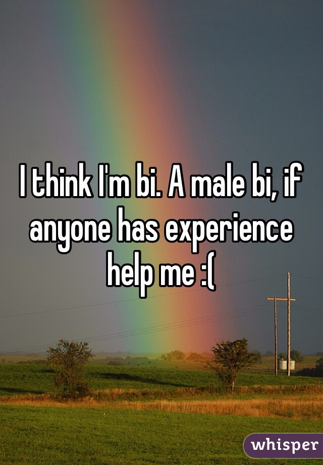 I think I'm bi. A male bi, if anyone has experience help me :(