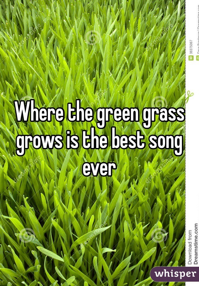 Where the green grass grows is the best song ever
