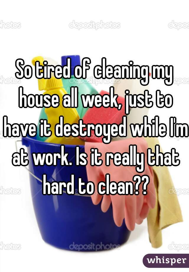 So tired of cleaning my house all week, just to have it destroyed while I'm at work. Is it really that hard to clean??