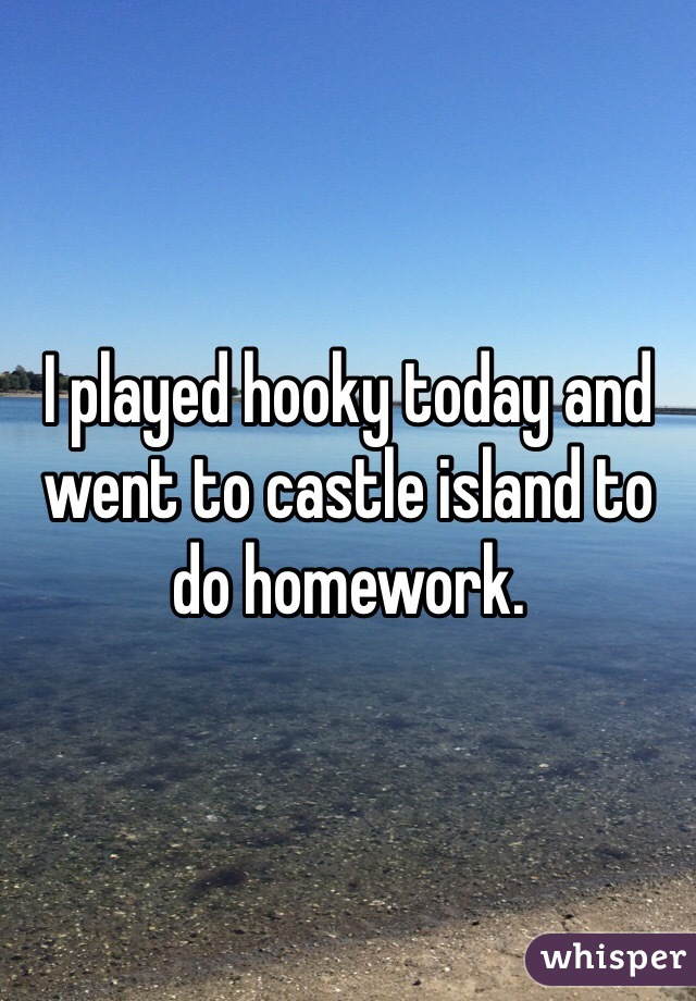 I played hooky today and went to castle island to do homework.